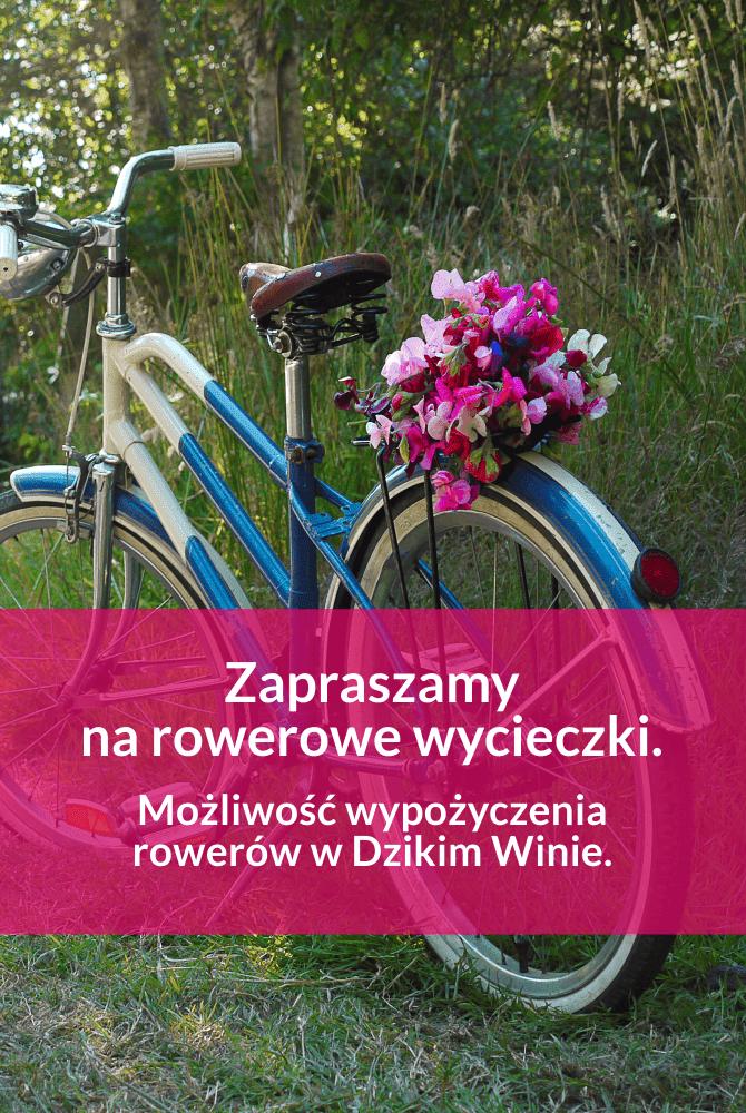 rowery1