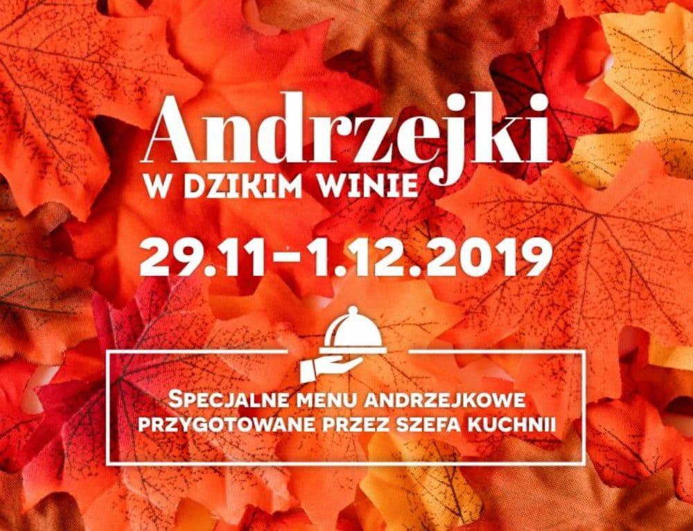 Andrzejki 2019 w Dzikim Winie